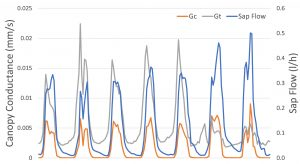 7 days of sap flow and conductance data